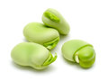 Broad Beans Royalty Free Stock Images - 30936179