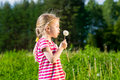 Cute Blonde Little Girl Blowing A Dandelion And Making Wish Royalty Free Stock Photography - 30967557