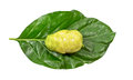 Close Up Of Fresh Noni On Green Leaf Stock Photography - 30997942