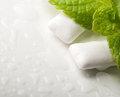 Chewing Gums With Fresh Green Mint Royalty Free Stock Photo - 31001515