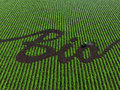 Word Bio On The Cultivated Land Royalty Free Stock Images - 31052479