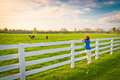 Woman  Enjoying  Countryside  View  With Green Pastures And Hors Royalty Free Stock Photography - 31054347