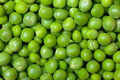 Peas Royalty Free Stock Photography - 31054737