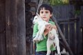 Boy With Little Goat Royalty Free Stock Photography - 31073477