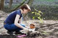 Woman Planting Young Seedling Stock Photos - 31143983