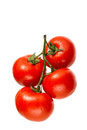 Tomatoes On The Vine Royalty Free Stock Photos - 31182338