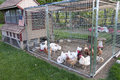 Chicken Coop Stock Images - 31214124