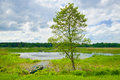 Landscape With Boat On The Flood Waters Of Narew River. Royalty Free Stock Images - 31282899