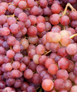 Red Grapes Stock Images - 3137614