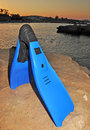Swim Fins At Sunset Stock Images - 31371934