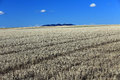Stubble Field And The Mountains Royalty Free Stock Photography - 31376207