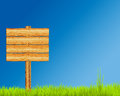Wooden Sign On Grass Royalty Free Stock Image - 31380276