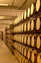 Wine Barrels In An Aging Cellar Stock Photos - 31387963