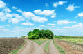 Two Rural Roads To Horizon Royalty Free Stock Images - 31406889