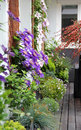 Modern Terrace With A Lot Of Flowers Stock Images - 31422724
