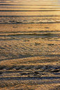 Background Of Lines On Sand Royalty Free Stock Image - 31433146