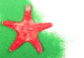 Sea Star Stock Photography - 31448702