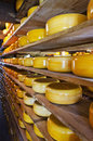 Stacked Cheese Royalty Free Stock Photography - 31463517