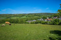 Grosmont Town And Railway Station Royalty Free Stock Photo - 31479785