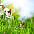 Abstract Environmental Backgrounds Royalty Free Stock Image - 31570686