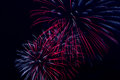 Colorful Fireworks On The Black Sky Background Royalty Free Stock Images - 31573479