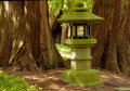 Lamp In Japanese Garden Royalty Free Stock Images - 3168089
