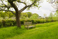 Bench In Orchard Garden Royalty Free Stock Photos - 31607178