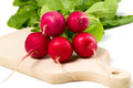 Fresh Radish Stock Photo - 31640010