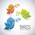 Birds Royalty Free Stock Photography - 31666097