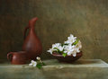 Still Life With Flowers Of Apple Royalty Free Stock Images - 31670299