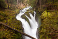 Sol Duc Falls, Olympic National Park Royalty Free Stock Image - 31676606