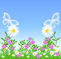 Daisies And Transparent Butterflies Stock Photo - 31677860