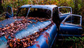 An Rusty, Abandoned Car Covered In Fallen Leaves Royalty Free Stock Photo - 31741185