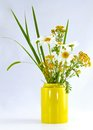 Beautiful Bouquet Of Wild Flowers Stock Images - 31782524