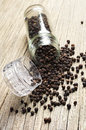 Black Pepper And Grinder For Spices Royalty Free Stock Images - 31924649