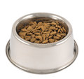 Pet S Dog Metal Bowl Isolated Stock Images - 31932684