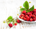 Wild Strawberry In A Plate Stock Photo - 31935740