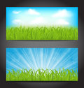 Set Summer Cards With Grass, Natural Backgrounds Royalty Free Stock Photography - 31972837