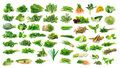 Collection Of Fruit And Vegetables Royalty Free Stock Photography - 31985867