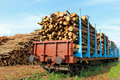 Transporting Wood By Train Stock Photos - 31999273