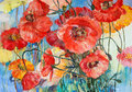 Red Poppies On Yellow And Blue Oil On Canvas Illustration Stock Image - 32006541