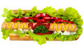 Tasty Hot Dog, Food Stock Photo - 32037200