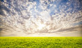 Green Grass And Sunset Sky Background Royalty Free Stock Photography - 32045767