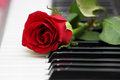 Red Rose On Piano, Love And Music Royalty Free Stock Photos - 32056308