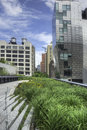 High Line In NYC Stock Photo - 32069550