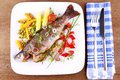 Grilled Trout With Quite Different Vegetables With Cutlery Stock Photo - 32122720