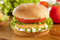 Breaded Chicken Patty Sandwich On A Bun Royalty Free Stock Photo - 32193085