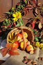 Autumnal Still Life Royalty Free Stock Image - 3225056