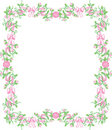 Pink Rosebud Border Royalty Free Stock Photography - 3232797