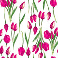 Watercolor Seamless Pattern With Painted Pink Tulips Royalty Free Stock Photo - 32344665